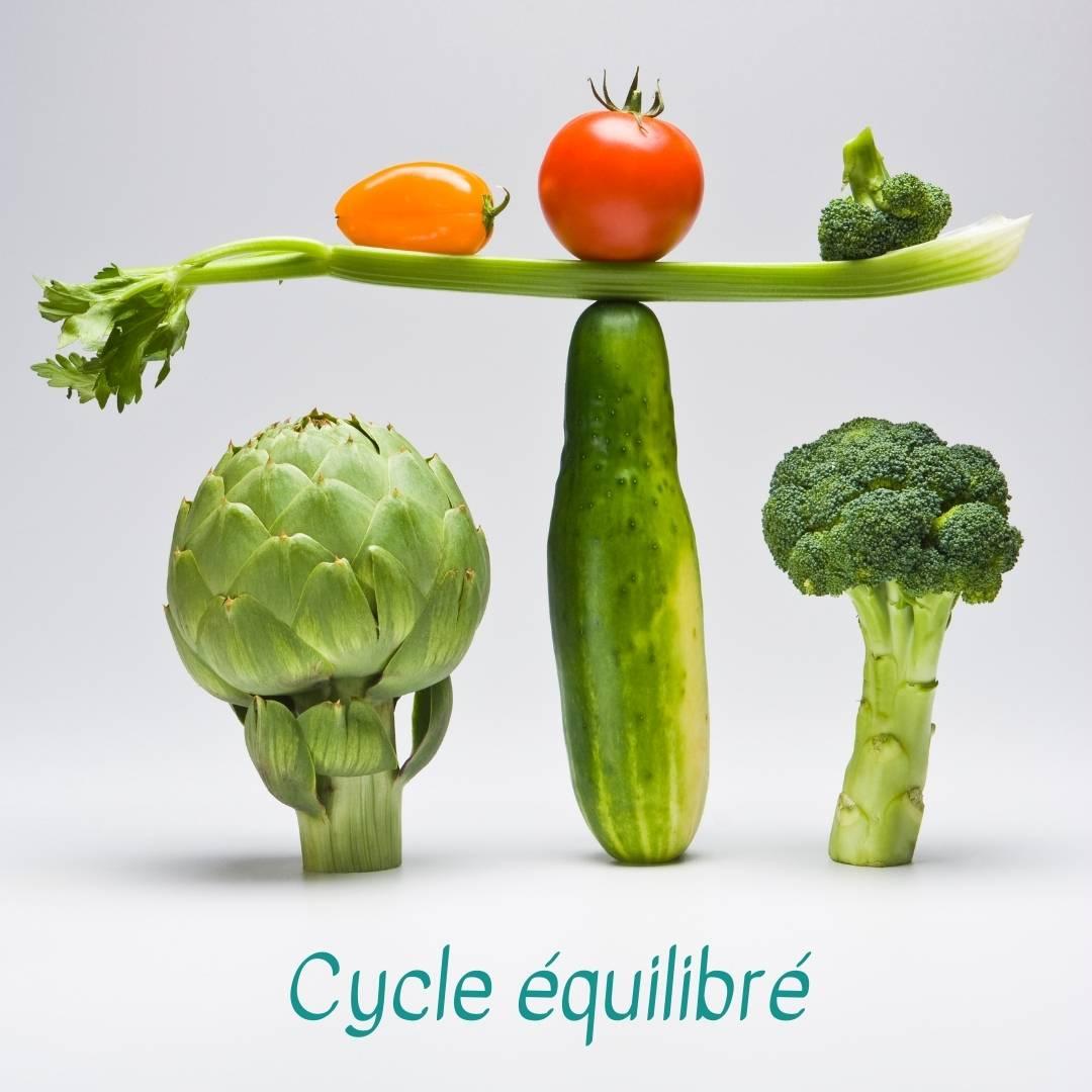 alimentation et cycle équilibré